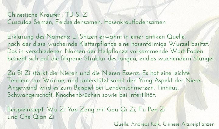 chinesisches-kraeuterlexikon-tu-si-zi